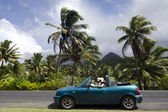 Couple traveling by convertible car in a Pacific Island — Stock Photo