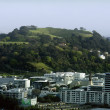 Stock Photo: Mount Eden in Auckland New Zealand NZ