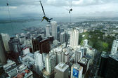 Bungee jump from the Sky Tower in Auckland New Zealand NZ — Stock Photo