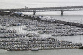 Aerial view of Westhaven Marina in Auckland New Zealand NZ — Stock Photo