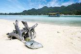 Muri Lagoon in Rarotonga Cook Islands — Stock Photo