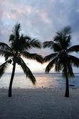 Titikaveka praia em rarotonga cook islands — Foto Stock