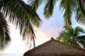 Pacific Island Hut — Stock Photo