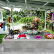 Family grave in Rarotonga Cook Islands — Stock Photo