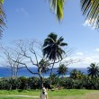 Outdoor Park in Rarotonga Cook Islands — Stock Photo