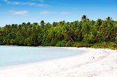 Landscape of Tekopua island in Aitutaki Lagoon Cook Islands — Stockfoto