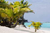 Landscape of Arutanga island in Aitutaki Lagoon Cook Islands — Stock Photo