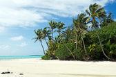 Landscape of Rapota Island in Aitutaki Lagoon Cook Islands — Stockfoto
