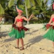 Polynesian Pacific Island dance — Stock Video