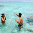 Stock Photo: Snorkeling in Aitutaki Lagoon Cook Islands