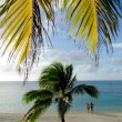 Tourist visit Aitutaki Lagoon Cook Islands — Stock Photo