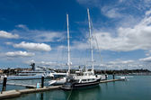 Wynyard Wharf Auckland New Zealand — Stock Photo