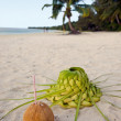 Coconut and sun hat on the sandy sea shore — Stock Photo