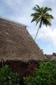 Traditional Polynesian houses in Aitutaki Lagoon Cook Islands — Stock Photo