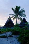 Beach Bungalows on Polynesian tropical Island — Stock Photo