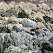 Stock Photo: Rock layers