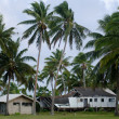 Destroyed house from Cyclone Pat in Aitutaki Lagoon Cook Island — Stock Photo #36258799