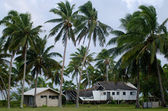 Destroyed house from Cyclone Pat in Aitutaki Lagoon Cook Island — Stock Photo