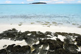 Landscape of One foot Island in Aitutaki Lagoon Cook Islands — Stock Photo