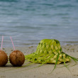 Two coconuts and sun hat on the sandy sea shore — Stock Photo