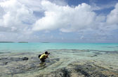 Travel photographer photographing Aitutaki Lagoon Cook Islands — Photo