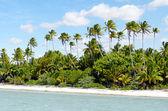 Krajina ostrova maina laguny aitutaki Cookovy ostrovy — Stock fotografie