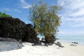 Krajina ostrova arutanga v aitutaki laguny Cookovy ostrovy — Stock fotografie