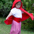 Little Red Riding Hood — Stock Photo #36540121