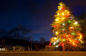 Christmas tree lit at night — Stockfoto