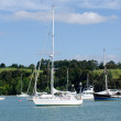 Opua marina at the Bay of Islands New Zealand — Foto Stock