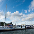 Opua marina at the Bay of Islands New Zealand — Zdjęcie stockowe
