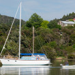 Sail boat at the Bay of Islands New Zealand — Stock Photo #37849553