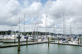 Opua marina at the Bay of Islands New Zealand — ストック写真