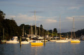 Opua marina at the Bay of Islands New Zealand — Stockfoto