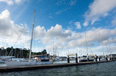 Opua marina at the Bay of Islands New Zealand — Stok fotoğraf