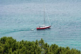 Sail boat at the Bay of Islands New Zealand — 图库照片