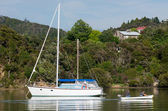 Sail boat at the Bay of Islands New Zealand — Stock Photo
