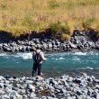 Fisherman fly fishing in Fiordland — Stock Photo #39824207