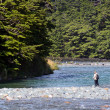 Fisherman fly fishing in Fiordland — Stock Photo #39824597