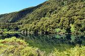 Fiordland - New Zealand — Stock Photo