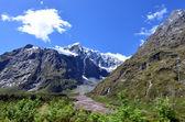 Fiordland - Yeni Zelanda — Stok fotoğraf