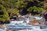 Fiordland - nový zéland — Stock fotografie