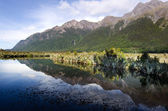 Fiordland - New Zealand — Stock Photo
