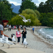 Queenstown New Zealand — Stock Photo #40058217