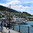 Queenstown New Zealand — Stock Photo #40058685
