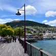 Queenstown New Zealand — Stock Photo #40058699