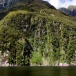 Milford Sound - New Zealand — Stock Photo #40187041