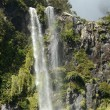 Stock Photo: Milford Sound - New Zealand