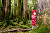 Child lost in the woods — Stock Photo