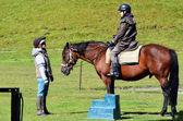 Horse Trekking and Horse Riding — Stock Photo